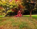 Red Queen (03).jpg