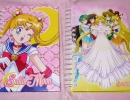 01-23 Sailor Moon Notebooks.JPG