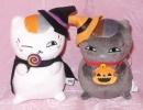 36 Halloween cats.JPG